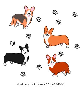 Illustration for children. Lovely furry doggies of welsh corgi. Decorative breeds of dogs. Pattern with welsh corgi and lovely prints of paws.