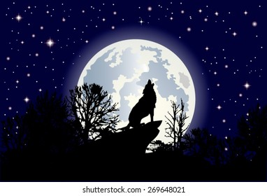 Illustration of the clear starry sky and a huge moon shining in the background.Foreground howling lone wolf, loner.