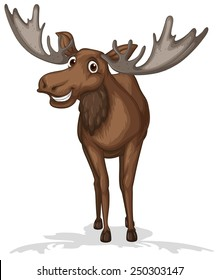 Illustration of a close up moose