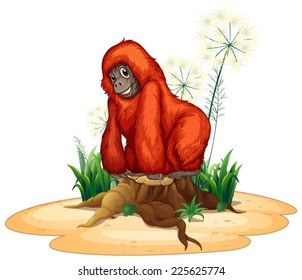 Illustration of a close up orangutan