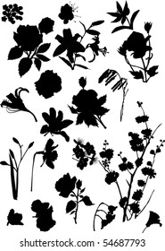 illustration with collection of flowers silhouettes isolated on white background