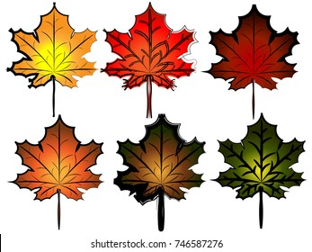 Illustration of colorful autumn leaves set.Vector.Ddifferent autumn leaves isolated on white background.