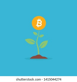 Illustration concept of Bitcoin growing from a plant.