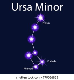 Illustration constellation  Ursa Minor with stars Pherkad, Kochab, Polaris