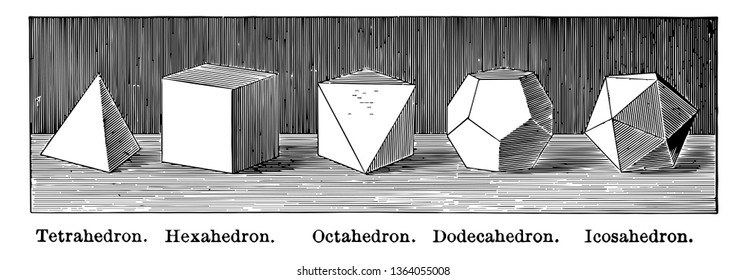 Illustration containing a tetrahedron, hexahedron, octahedron, dodecahedron and icosahedron, placed side by side, vintage line drawing or engraving illustration.