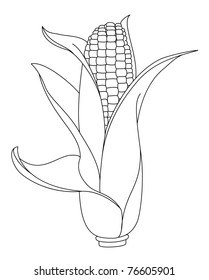illustration of a corn outlined