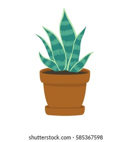 illustration of cute cartoon succulent in pot on white background. can be used for cards, party invitations or like stickers