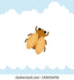 Illustration of cute cicada icon.