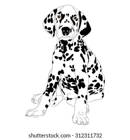 Illustration of a cute Dalmatian dog Puppy sitting isolate
