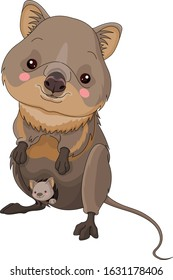 Illustration of cute quokka with cub