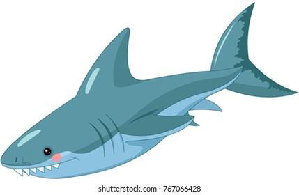 Illustration of cute shark