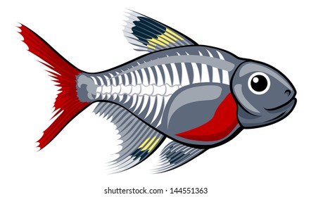 An illustration of a cute x-ray tetra cartoon fish