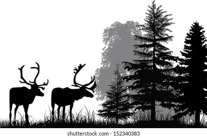 illustration with deer silhouettes in forest isolated on white background