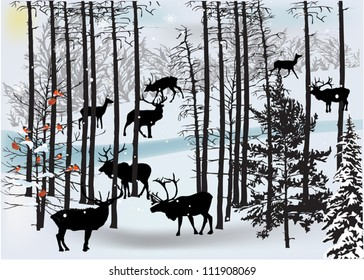 illustration with deers in white winter landscape