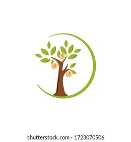 Illustration design of money tree isolated white background. Flat design of money tree. Vector illustration EPS.8 EPS.10