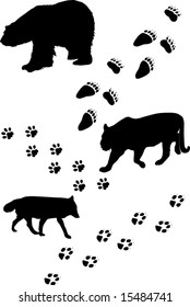 illustration with different animals and tracks collection