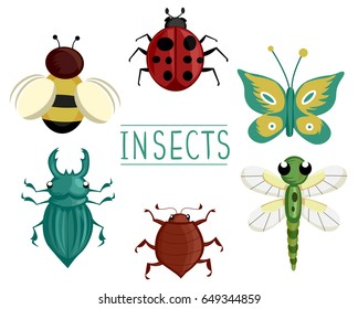 Illustration of Different Insects Like Bee, Lady Bug, Butterfly, Dragonfly, Ground Beetle and Stag Beetle
