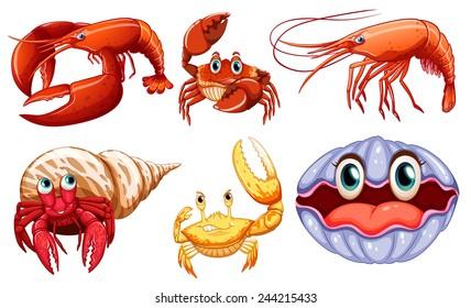 Illustration of different sea animals