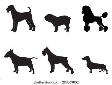 illustration with dog breeds in black color
