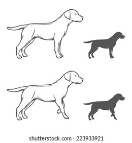 Illustration of a dog in different poses isolated on white background