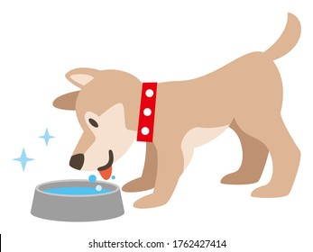 Illustration of a dog drinking water