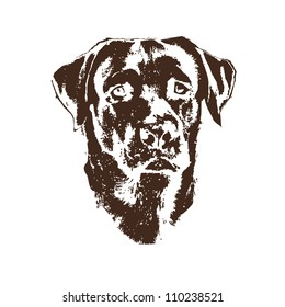 Illustration of dog, labrador retriever
