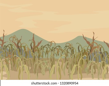 Illustration of Dry and Dying Corn Field