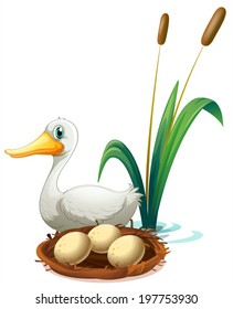 Illustration of a duck beside the nest on a white background