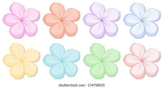 Illustration of the eight five-petal flowers in different colors on a white background