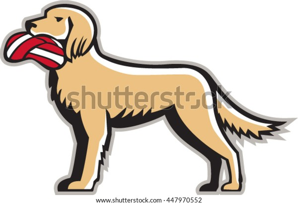 Illustration of an english setter dog standing holding biting deflated volleyball viewed from the side set on isolated white background done in retro style.