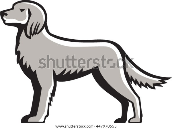 Illustration of an english setter dog standing viewed from the side set on isolated white background done in retro style.