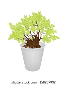 An Illustration of Exotic Bonsai Tree in A Flowerpot for Garden Decoration
