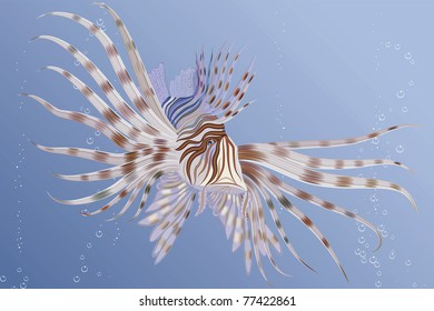 Illustration of an exotic lion fish swimming underwater - without mesh and gradients
