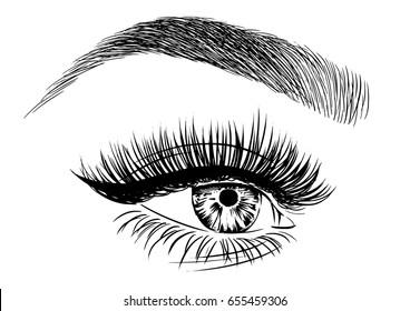 illustration of Female Eye Vector