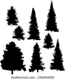 illustration with fir tree silhouettes isolated on white background