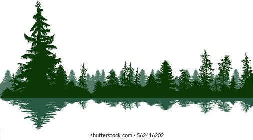 illustration with fir trees forest isolated on white background