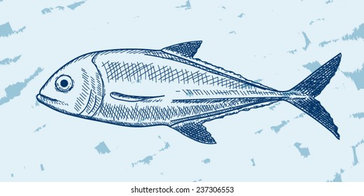 Illustration of fish (jack) in sketch style, underwater edition