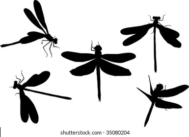 Dragonfly Silhouette Images Stock Photos Vectors Shutterstock It's incredible looking at the intricate details involved in the tattoo. https www shutterstock com image vector illustration five dragonfly silhouettes isolated on 35080204