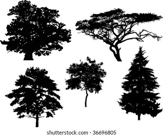 illustration with five tree silhouettes isolated on white background
