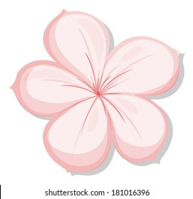 Illustration of a five-petal pink flower on a white background