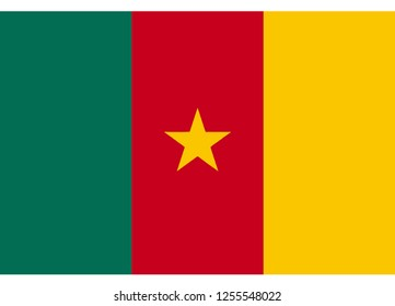 illustration of flag vector,flag of cameroon