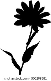 illustration with flower silhouette isolated on white background