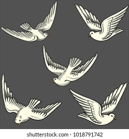Illustration of flying doves in different positions.Hand drawn contoured pigeon. Hand drawn of flying doves with love letters isolated on grey. Retro,vintage detailed image done in black line strokes
