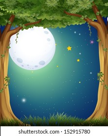 Illustration of a forest and the bright moon