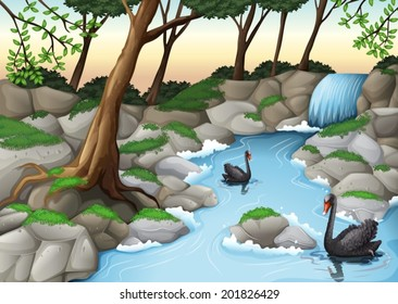 Illustration of a forest with swans