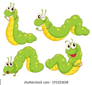 Illustration of the four green caterpillars on a white background
