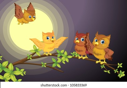 illustration of four owls on the tree branch in night