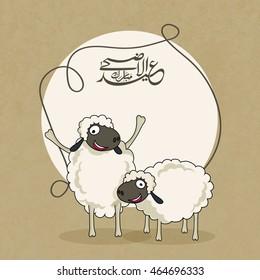 Illustration of funny Sheeps with Arabic Islamic Calligraphy Text Eid-Al-Adha Mubarak in a frame for Muslim Community, Festival of Sacrifice Celebration.