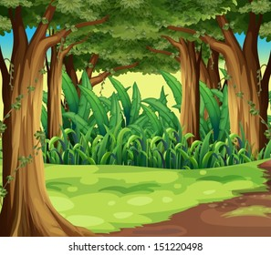 Illustration of the giant trees in the forest