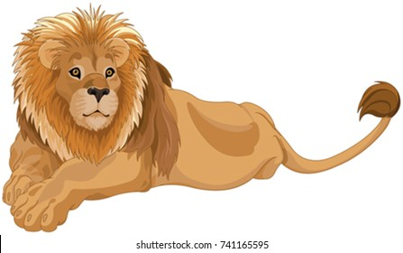lion clipart images stock photos vectors shutterstock rh shutterstock com lion clipart black and white lion clip art pictures